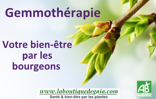 Post gemmotherapie page001