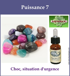 complexe mineral puissance 7