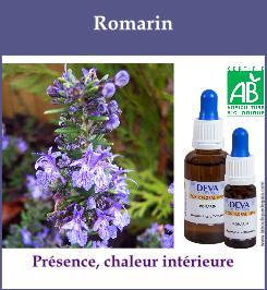 elixir floral romarin