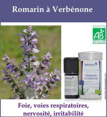 Romarin à Verbénone