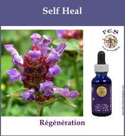 Self heal