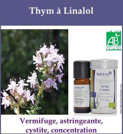 Thym a linalol
