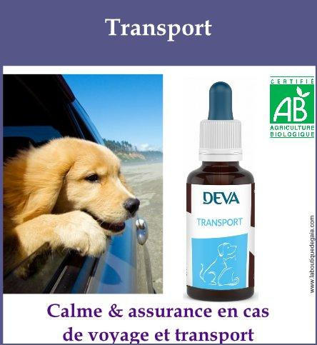 Transport animaux 1