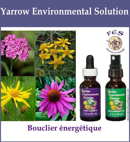 Yarrow environmental solution 19